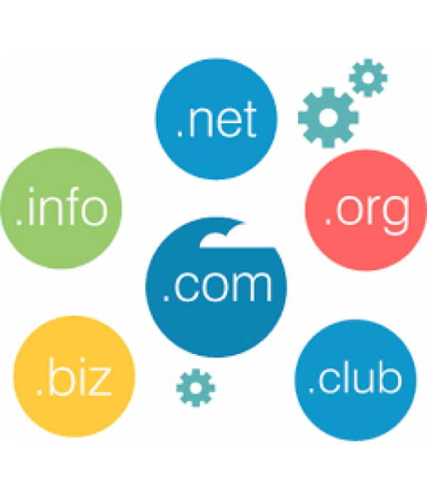 Domain Registration + Support + Maintenance